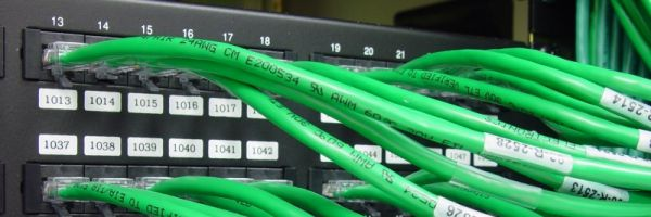 Green network cables plugged into rack